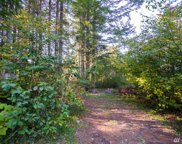 8595 Ginkgo Dr, Maple Falls image