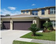 4810 Diamonds Palm Loop, Wesley Chapel image
