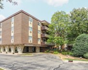 1301 South Finley Road Unit 419, Lombard image