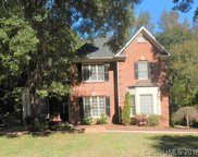 595  Cranborne Chase Drive, Fort Mill image