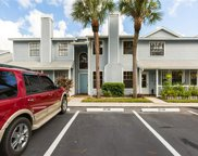 12538 Castle Hill Drive, Tampa image