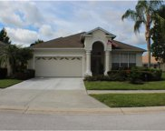 8002 Saint James Way, Mount Dora image