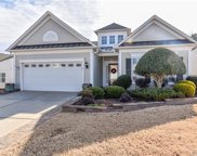 41080  Calla Lily Street Unit #9, Indian Land image