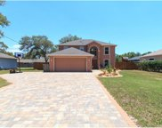3275 Guava Lane, Spring Hill image