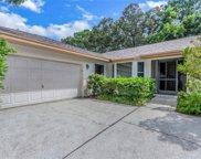 4684 Orange Grove Way, Palm Harbor image