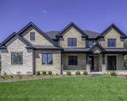 10760 Olde Mill Drive, Orland Park image