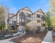 1151 Alpine Village Drive Unit #20, Harbor Springs image