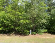 Lot N-13 Captain Johnsons Drive, North Augusta image