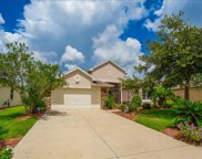 8821 Bridgeport Bay Circle, Mount Dora image