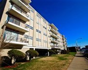 1814 West 79Th Street Unit 210, Chicago image