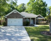 2555 Lake Vista Drive, Little River image