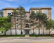 1135 Schneider Avenue Unit 3C, Oak Park image