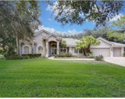 15704 Newcastle Court, Tampa image