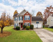 15003  Jerpoint Abby Drive, Charlotte image