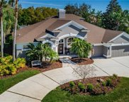 5457 Mira Vista Drive, Palm Harbor image