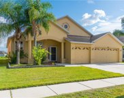 10407 Meadow Spring Drive, Tampa image