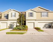 4976 White Sanderling Court, Tampa image