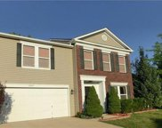 13347 Allegiance  Drive, Fishers image