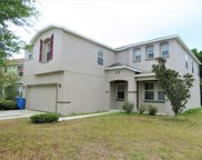 11148 Rising Mist Boulevard, Riverview image