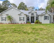 11311 Tralee Drive, Riverview image