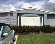 32 Island Lake Ln, Naples image