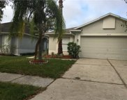 18126 Canal Pointe Street, Tampa image
