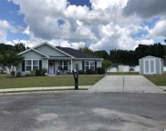 1008 Merrybell Ln, Conway image