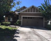 20824 Oldenburg Loop, Mount Dora image