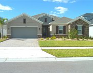 12128 Sandy Apple Road, Orlando image