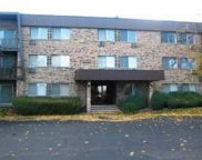 1205 East Hintz Road Unit 301, Arlington Heights image