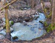649 +- Ac Off Rainbow Lake Road, Ono image