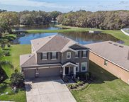 807 Bronze Bush Court, Plant City image