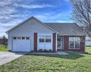 12507  Shelly Pines Drive, Charlotte image