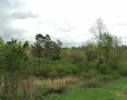 Lot # 9 County Road 118, Riceville image