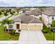 11421 Estuary Preserve Drive, Riverview image