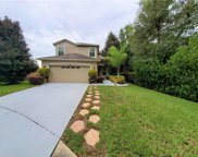 12304 Field Point Way, Spring Hill image