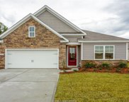 318 Great Harvest Road, Bluffton image