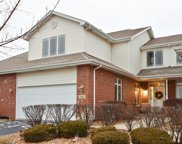 10828 West Crystal Creek Drive, Mokena image