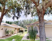 21023 Follensby Court, Land O Lakes image