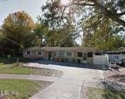 468 ALSEY DR, Orange Park image