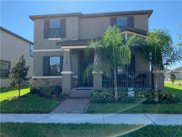 15142 Night Heron Drive, Winter Garden image