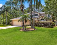 11801 COLLINS CREEK DR, Jacksonville image