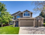 9921 South Silver Maple Road, Highlands Ranch image