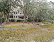 45 Spartina Crescent, Bluffton image