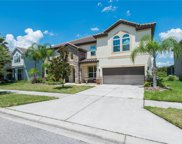 19315 Yellow Clover Drive, Tampa image