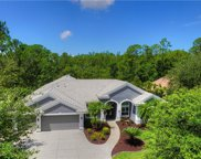 10502 Greencrest Drive, Tampa image