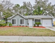 1251 Piney Branch Circle, Valrico image