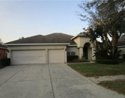 1114 Fennel Green Drive, Seffner image