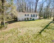 47795 Amite River Rd, St Amant image