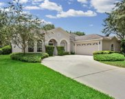 10221 Timberland Point Drive, Tampa image